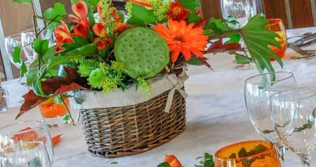 Salades fraicheurs hôtel île de ré